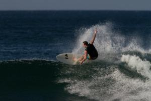alexander surf